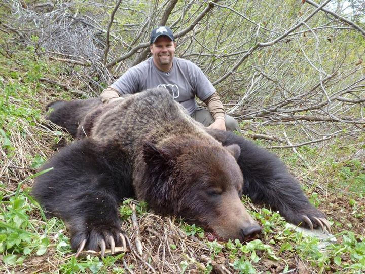 I Dont Like Posting Or Looking At This Anymore Than My Fellow Bear
