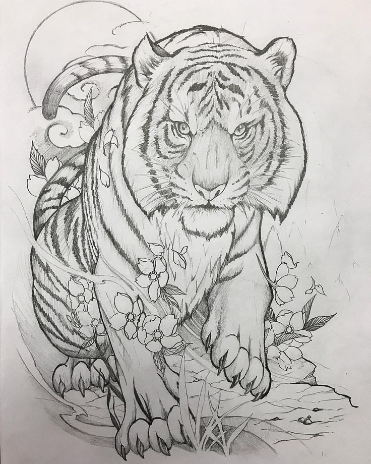 Картинки тигров для тату