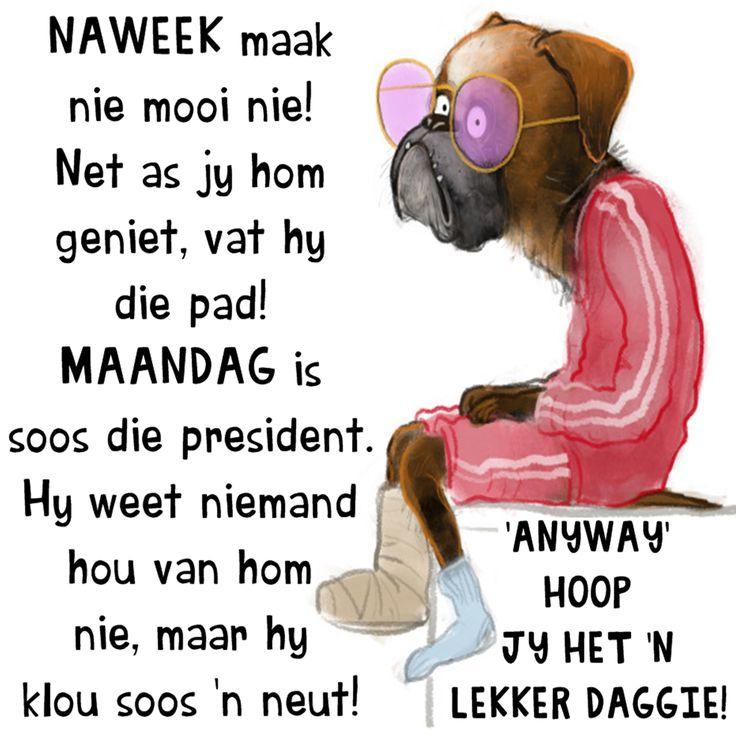NAWEEK maak  nie mooi nie! Net as jy hom geniet, vat hy die pad! MAANDAG is  soos die president.  Hy weet niemand  hou van hom  nie, maar hy  klou soos 'n neut!  'ANYWAY'  HOOP JY HET 'N LEKKER DAGGIE!