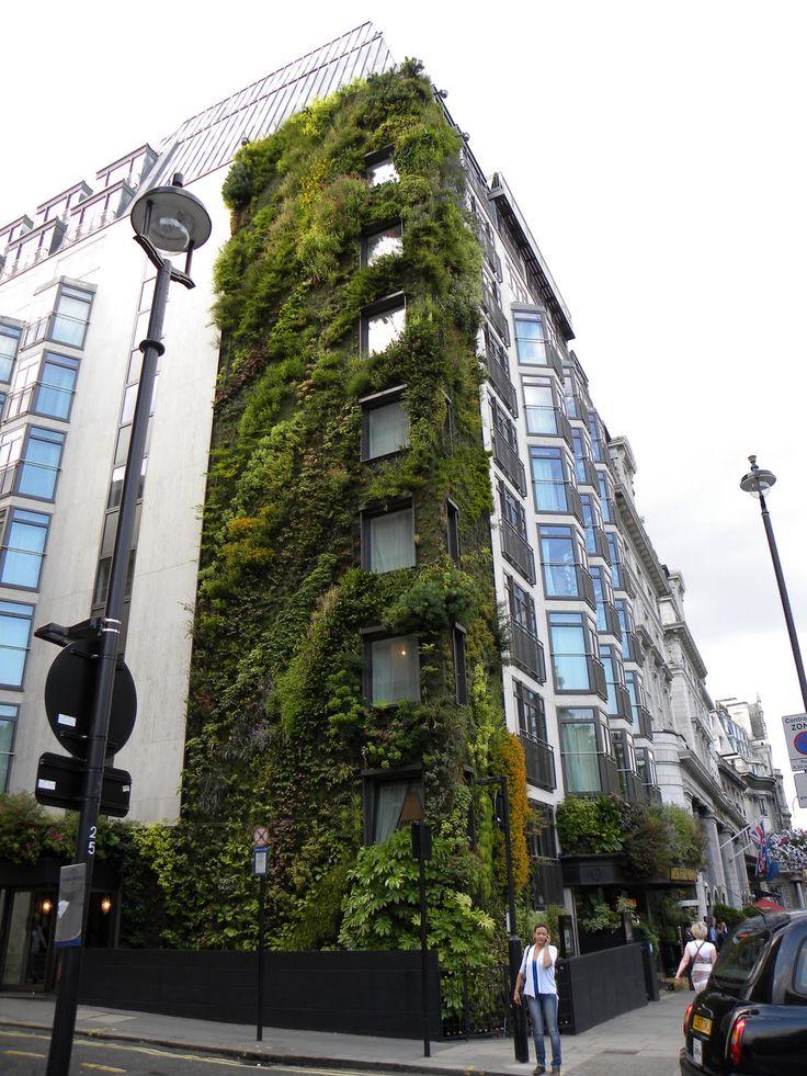 Além de trazerem beleza e harmonia ao ambiente e ao entorno do prédio onde estão instaladas, as fachadas verdes possibilitam conforto térmico e acústico, além de melhoria na qualidade do ar.
