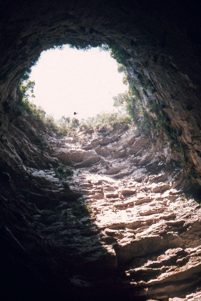 Ubicado en la densa vegetación de la Huasteca Potosina, se encuentra el Sótano de las Golondrinas, un abismo natural perteneciente al estado de San Luis Potosí.   El Sótano de las Golondrinas es una cueva de piedra caliza cuya característica principal recae en su forma cónica, ya que la abertura en su exterior es …