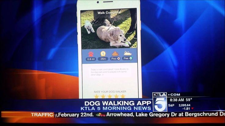 Wag! Walking the On Demand Dog Walking App on The KTLA Morning News