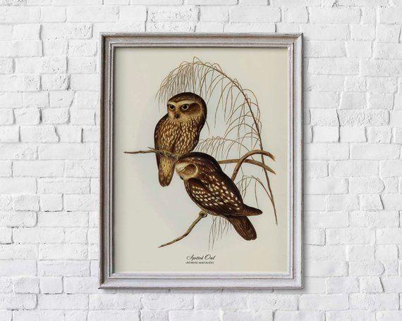 Digital Download Digital Art Print Digital Prints Printable Art Vintage Poster Printable Wall Art Birds Instant Download