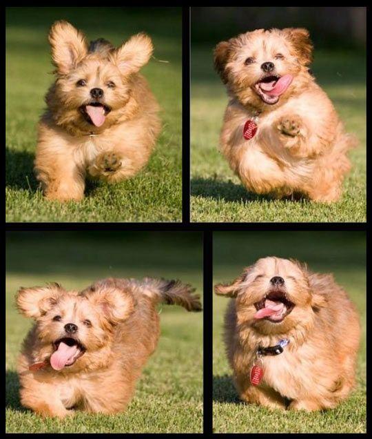 The face of sheer joy