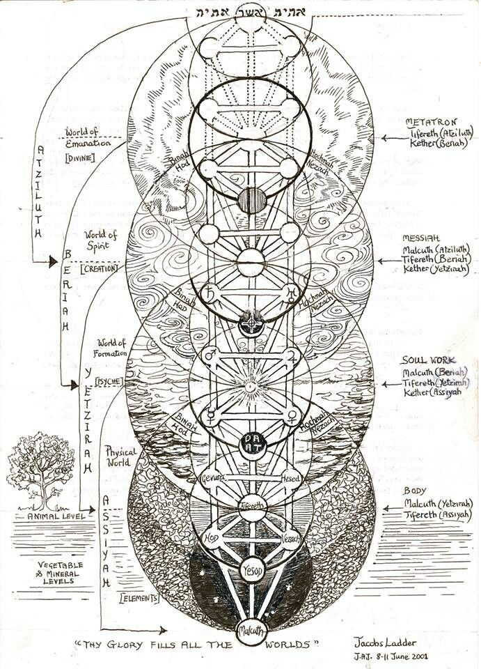 The Tree of Life, also called Jacob's Ladder. This is a Kabbalistic image but interestingly, the spheres in the tree overlay the flower of life 'sacred' geometric form and therefore represents a Primal Pattern of Nature.                                                                                                                                                      More