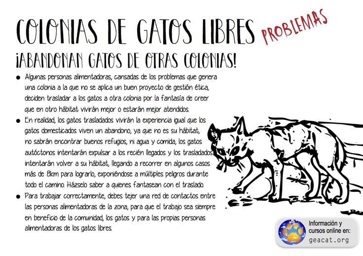 Problema nº 14: El abandono entre colonias  #CES   #GestiónÉtica  Curso: https://goo.gl/YXAFJC  Pdf: