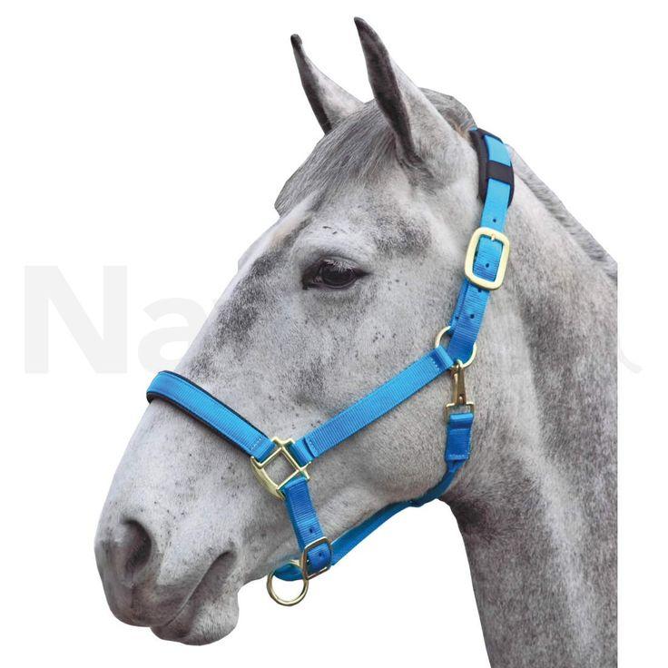 Shires Topaz Nylon Pony Headcollar Blue   Naylors.com