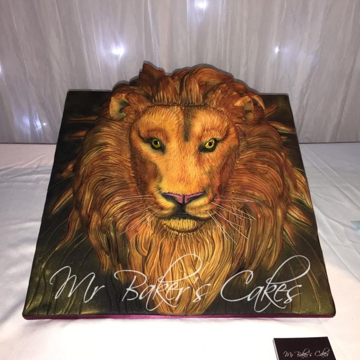 155 best Lion Cakes images on Pinterest Conch fritters Lion cakes