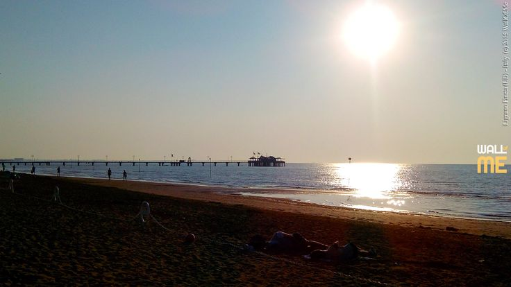 2015, week 36. Terrazza a mare - Lignano Pineta (UD), Italy. Picture taken: 2015, 08