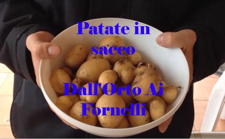 Coltivare Patate in un sacco anche sul balcone - Novelle, biologiche, bu...