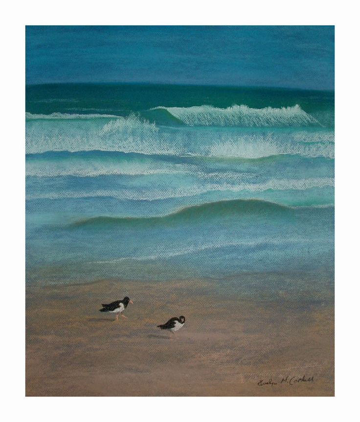 Oyster catchers on the Beach.