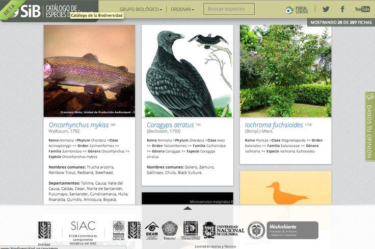 Catálogo de especies de páramos