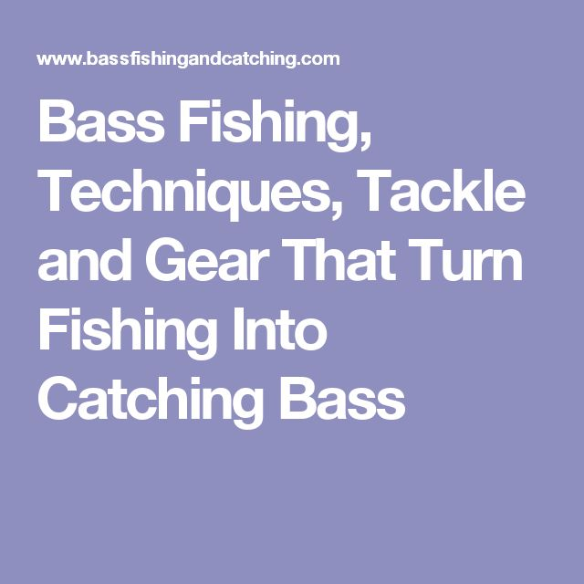 Bass Fishing, Techniques, Tackle and Gear That Turn Fishing Into Catching Bass