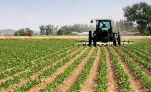 China Buys U.S. Farmland In Record Numbers!