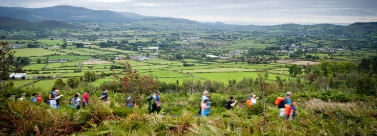 Check out the activities planned for the Get Outdoors weekend on Saturday 20th September 2014 in Slieve Gullion Forest Park. Visit www.ringofgullion.org and click on What's on to book your space.