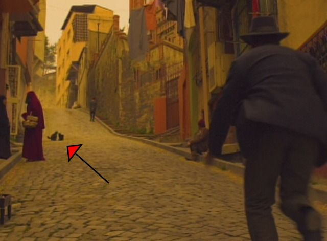 Purr Blurs!  These fighting kitties are seen very briefly on the street in Istanbul in the Russell Crowe film The Water Diviner (2014).