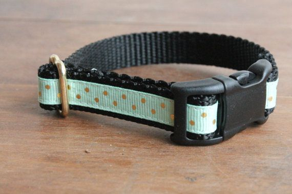 Check out this item in my Etsy shop https://www.etsy.com/listing/227499025/girly-polka-dot-dog-collar-in-gold-polka