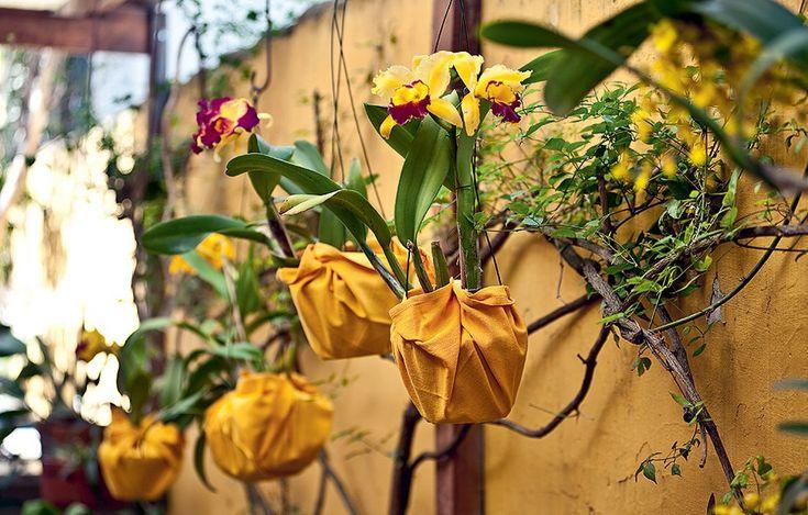 Embale vários vasos de orquídeas em guardanapos de tecido grandes e pendure-os no jardim
