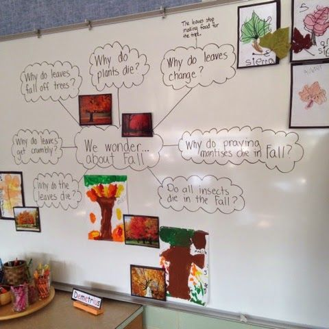 Inquiring Minds: Mrs. Myers' Kindergarten: The Autumn Season: Exploring Trees and Leaves and the Colors of Fall!