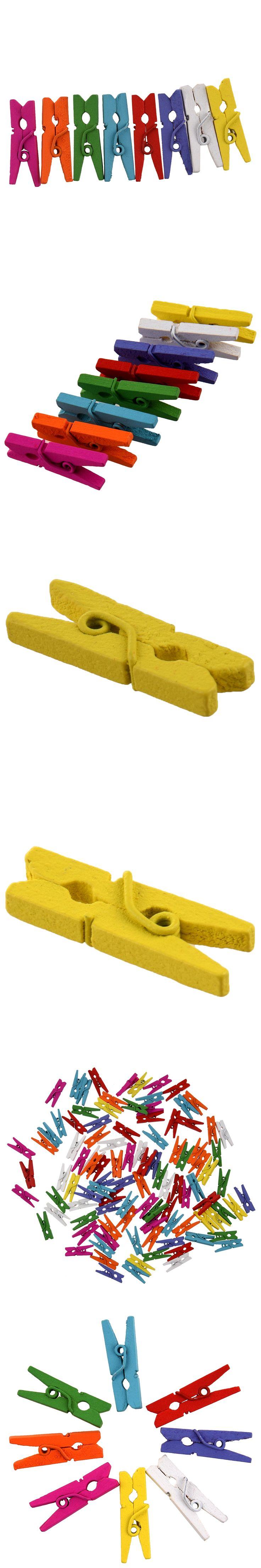 Mini Wooden Pegs - Multi Coloured 100pk