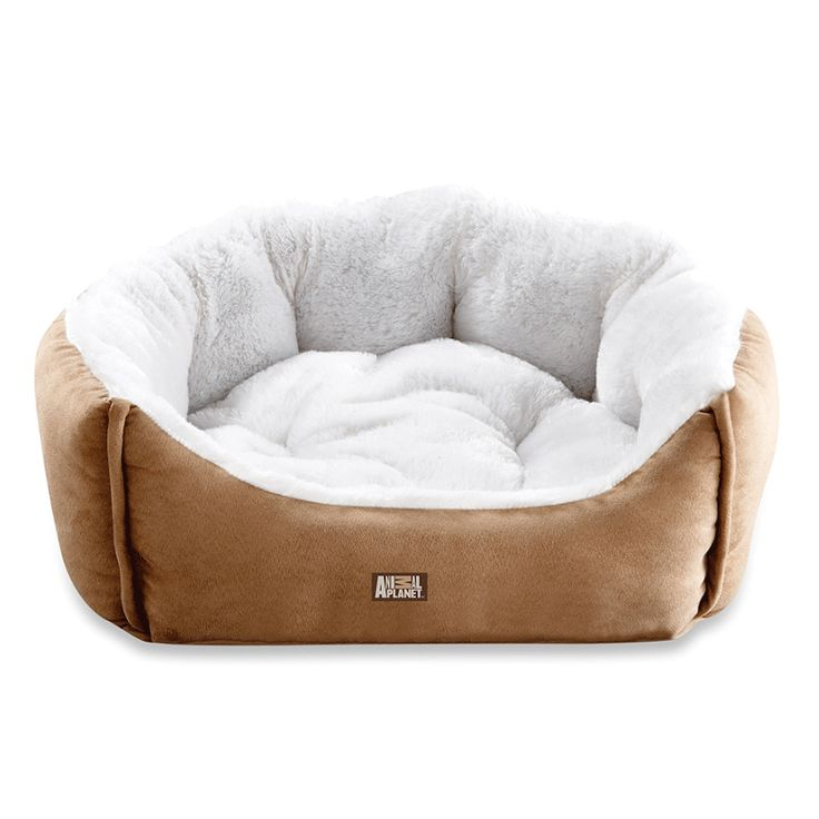 Permalink to Animal Planet Ultra Suede Dog Bed