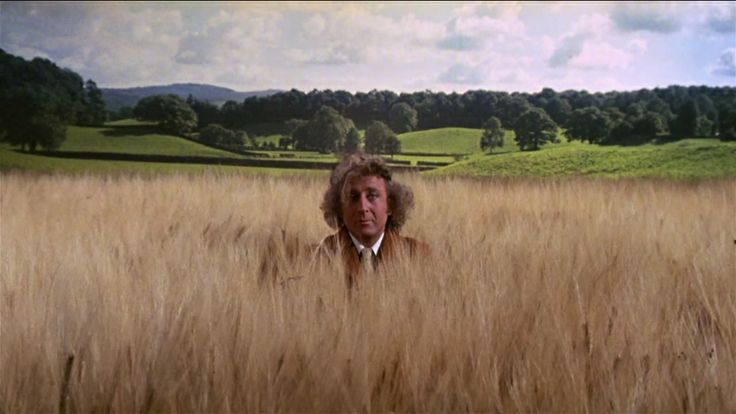 The Little Prince (1974) Directed by Stanley Donen