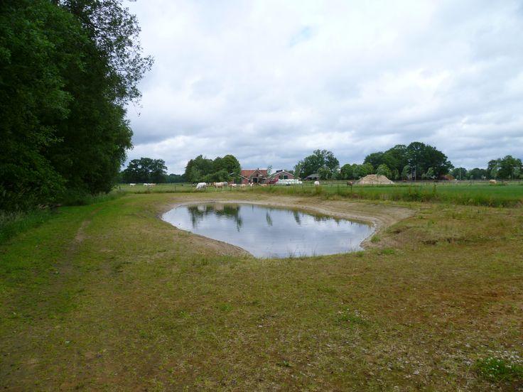 2013-06-23 Vanaf de Achterveldseweg is er een nieuw wandelpad aangelegd met een poel waar de hond lekker in kan zwemmen
