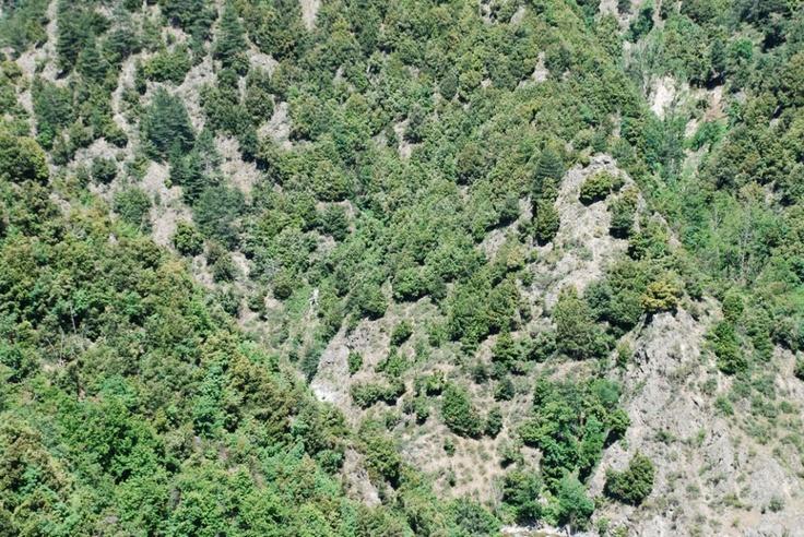 #welikesilaontour: 3 tappe, 3 zone diverse, 3 motivi per incontrarsi il #Sila #Calabria #Longobucco #asino