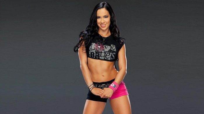 Share on Tumblr- There has been no indication on when WWE will end the feud between Divas Champion AJ Lee and Paige
