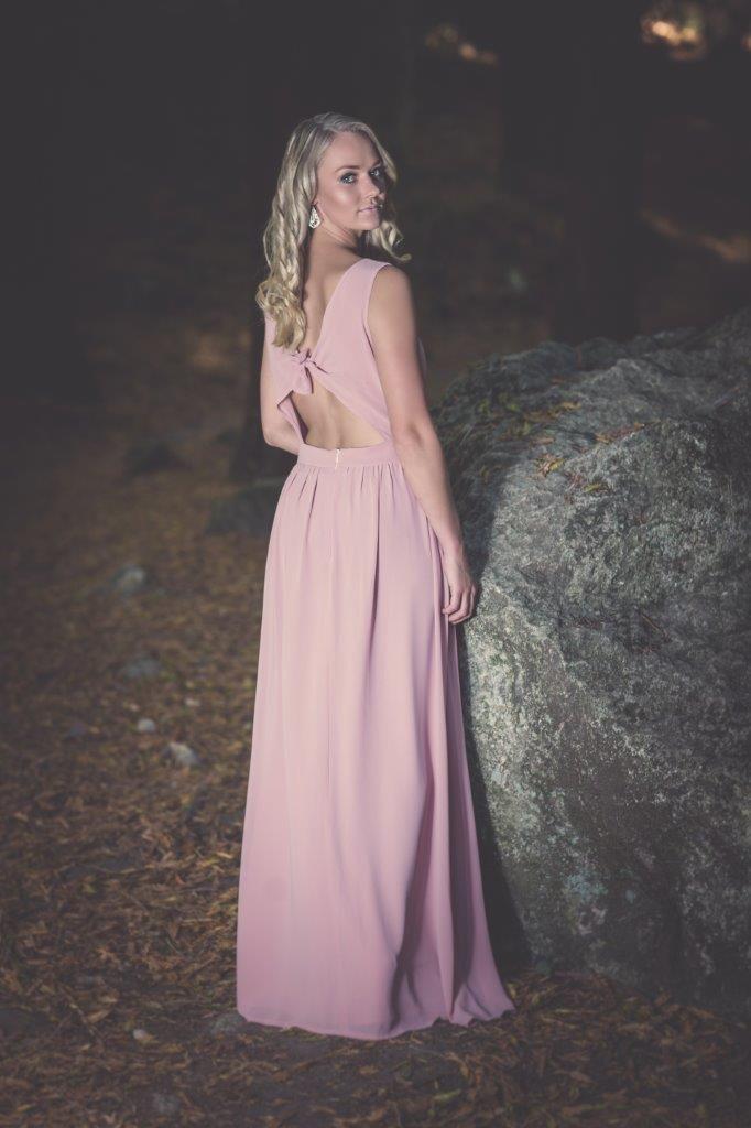 Rose Dress Back