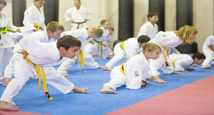 Karate kids perth offers quality and proficient classes