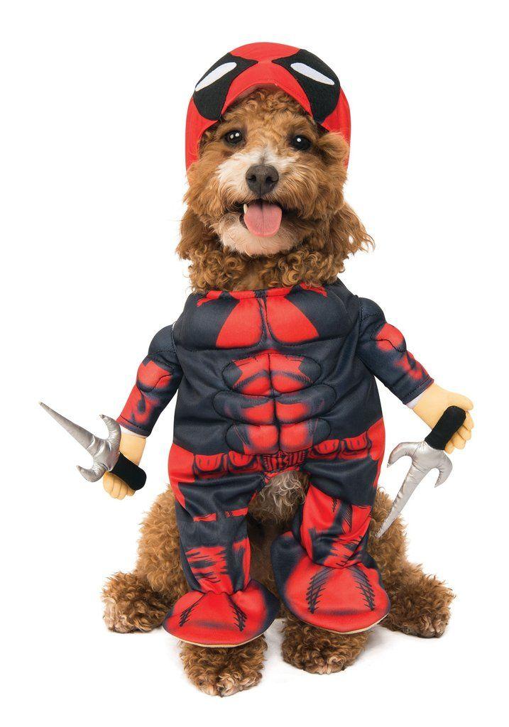 Deadpool Costume Pet Costumes Pet Halloween Costumes Best Dog