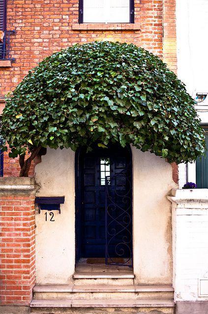 Over the door topiaries