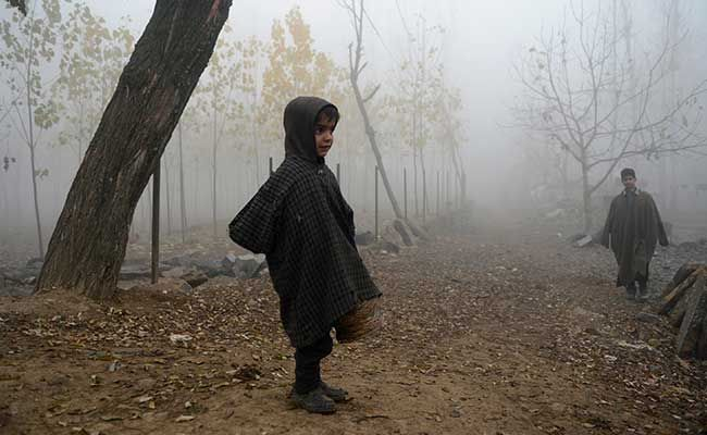 Mercury Drops Below Zero in Srinagar; Kargil Coldest in Jammu and Kashmir
