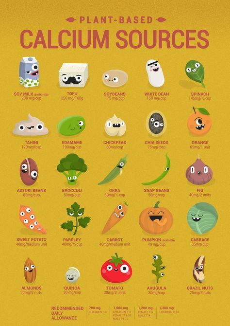 Vegan Calcium poster (English), cute characters show you plant based food chart