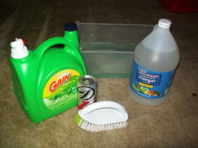 Cat Pee, Poop, and Other Odor and Stain Removal