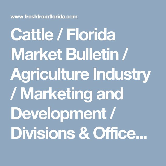 Cattle / Florida Market Bulletin / Agriculture Industry / Marketing and Development / Divisions & Offices / Home - Florida Department of Agriculture & Consumer Services