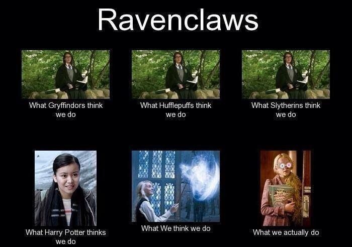Ravenclaw. Actually, it looks more like what Gryffindor thinks we do, for me.