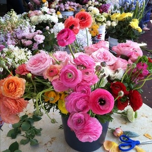 gorgeous flowers at Joy Thigpen class: Favorite Flowers, Gorgeous Flowers, Flowers Fabulous, Flowers Parties, Flowers Journey, Happy, Flowers Food Drinks, Outdoor Beautiful, Floral