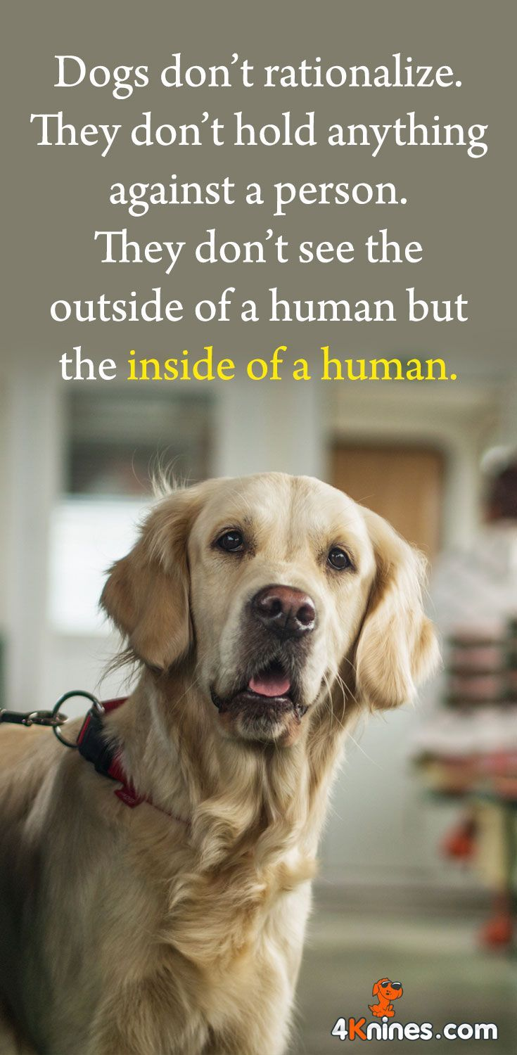 They Don T See The Outside Of A Human