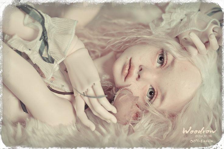 Картинки по запросу Lestia Dim