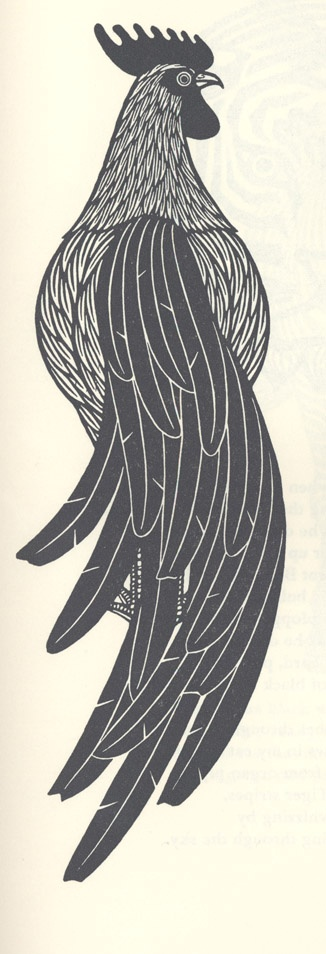 i love the lines on this rooster woodcut