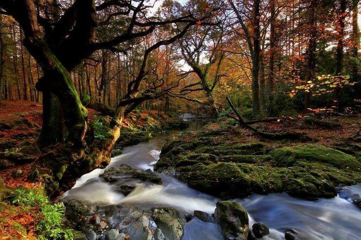 Irlanda - Recorrer sus paisajes.  Sueño compartido por: @carlosscheuch en la red social www.faro.travel
