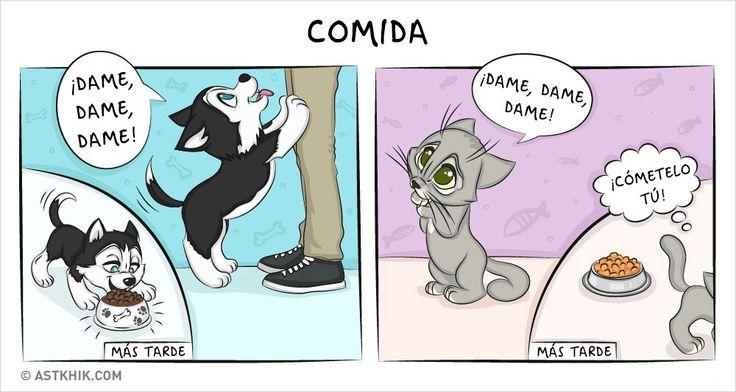 Comic que muestra las diferencias de vivir con un perro y con un gato mientras comen