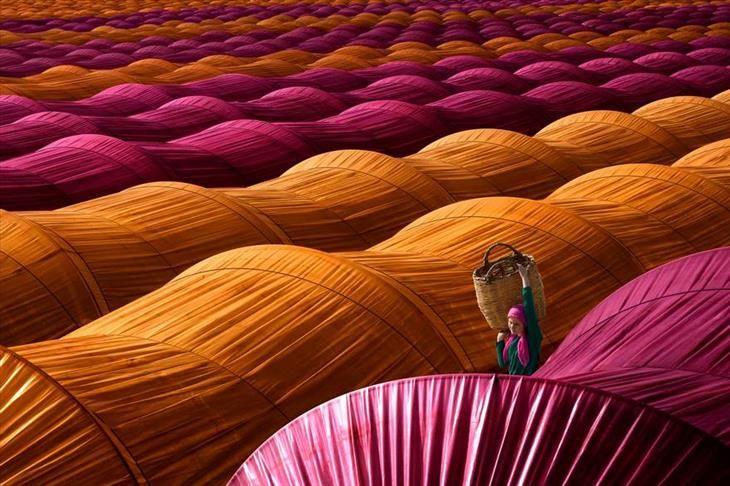 Os vencedores do Prêmio Internacional de Fotografia de Siena |  Uma coletora de morangos anda entre fileiras das estufas perto de Nazilli na província de Aydin, na Turquia.