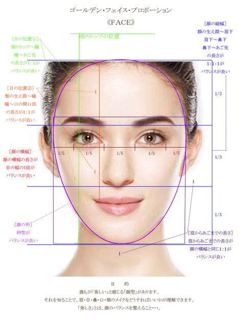 こちらが顔のゴールデンプロポーション。 バランスがよく理想的...|MERY [メリー]