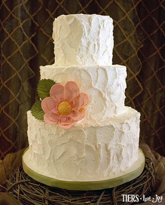 rough icing wedding cake how much cake per guest in your experience 19317