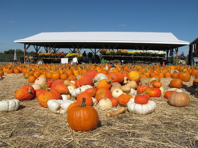 October 2014 Festivals and Events in the Washington, DC Area