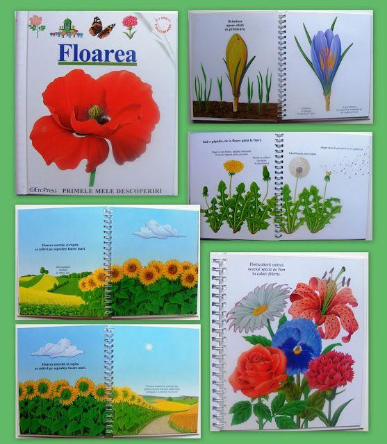Color Your Life in Joy: Flori, frunze sau copaci...