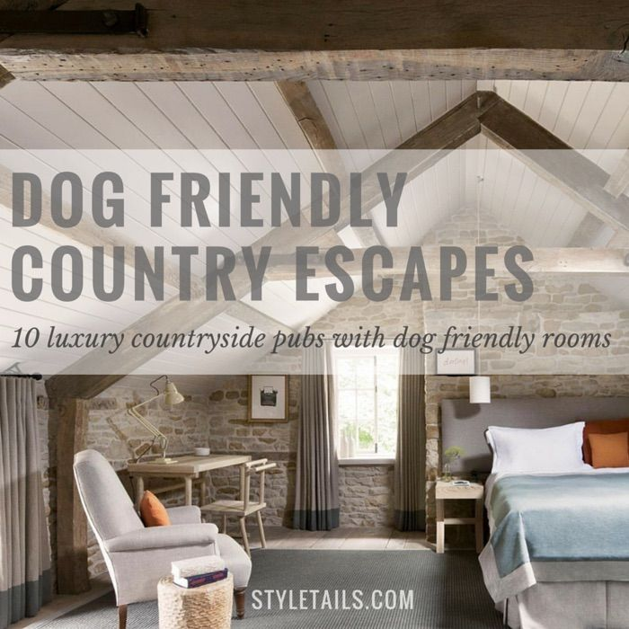 From the stunning Yorkshire Dales to charming Cotswolds villages, and the glorious Dorset coast, these pet friendly places are the perfect way to escape for some much needed R&R!